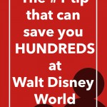 Want to Save Money at Walt Disney World? Hit up Yard Sales Beforehand To Save Hundreds!