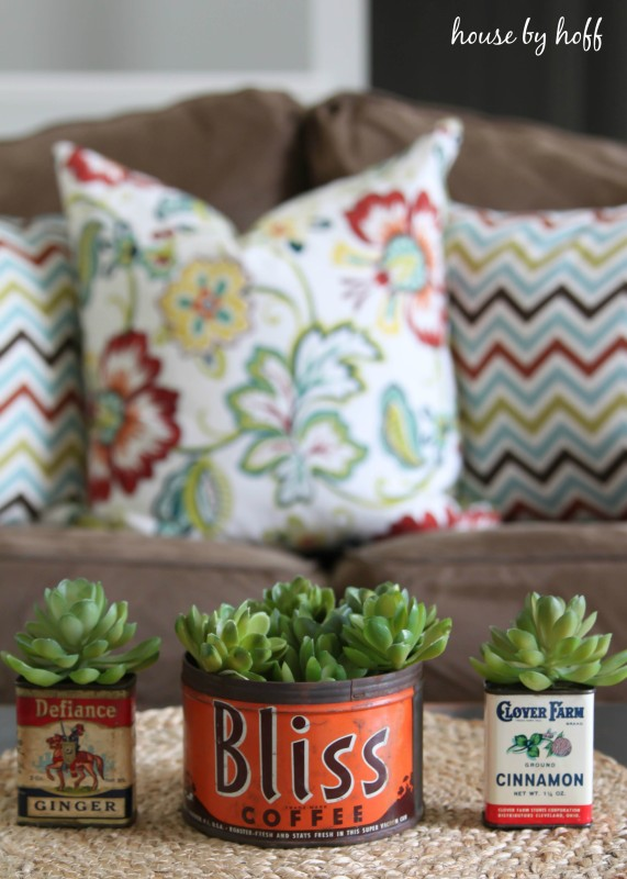 succulent-containers